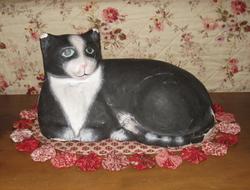 My_cat_1_2